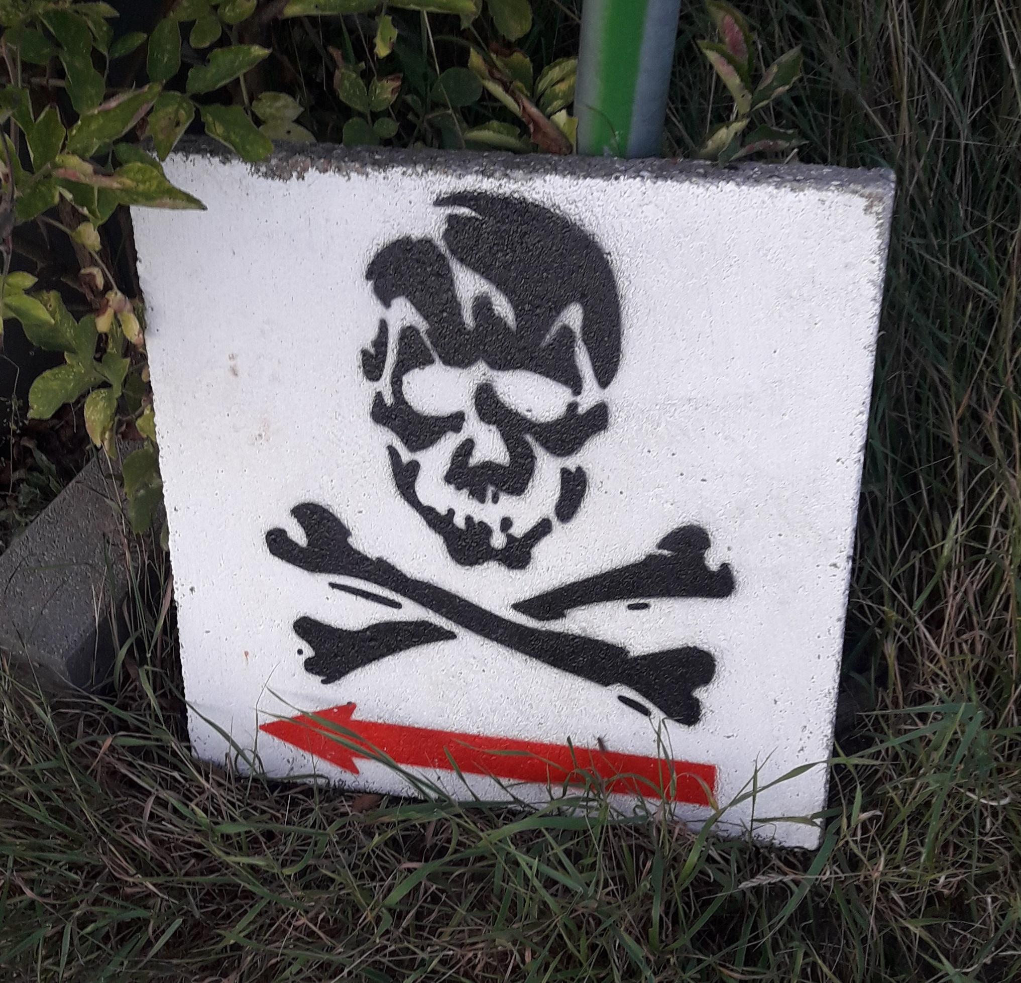 Piratennest